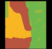 Nosao-logistics Logo